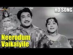 Watch the super hit tamil song 'Neerodum Vaikaiyile' from Paar Magale Paar Starring Sivaji Ganesan, Sowcar Janaki, M. Old Song Download, Movie Songs, Movies, Youtube Songs, Vintage Vignettes, Bright Paintings, Gif Pictures, Mp3 Song, Hd Video