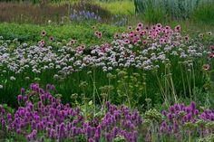 Prairie Style Gardens