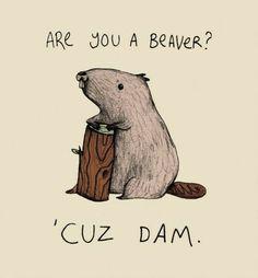 LOL funny cute shirt beaver pick-up line cuz dam Punny Puns, Puns Jokes, Corny Jokes, Puns Hilarious, Kid Jokes, Pick Up Lines Cheesy, Pick Up Lines Funny, Funny Pickup Lines, Cheese Pick Up Lines