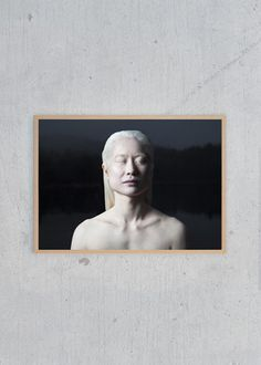 This black poster with this beautiful albino is my favorite art piece! Albino, Blue Walls, Art Pieces, Photo Wall, Sculpture, Frame, Poster, Photography, Beautiful