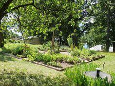 Bildresultat för ellen key trädgård
