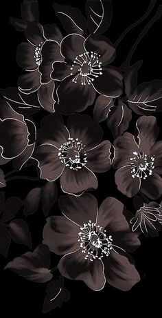 New Wallpaper Floral Black Phone Ideas Floral Wallpaper Iphone, Unique Wallpaper, Iphone Background Wallpaper, Print Wallpaper, Cellphone Wallpaper, Black Wallpaper, Flower Wallpaper, Pattern Wallpaper, Phone Backgrounds