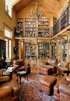 great library, comfy chairs, lots of books. needs more reading lights // Spettacolo