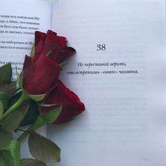 . Iphone Wallpaper Logo, Wallpaper Quotes, Rose Quotes, Russian Quotes, Go For It Quotes, World Quotes, Quran Verses, Love Poems, My Mood