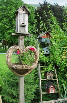 Birdhouse neighborhood.