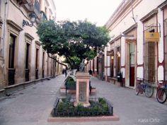 Callejuelas de  Lagos de Moreno Jalisco México