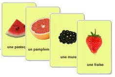 Free Printable flash cards to learn French fruits vocabulary French Teaching Resources, Teaching French, How To Speak French, Learn French, Free Printable Flash Cards, Printable Flashcards, French Flashcards, Group Meals, Food Groups