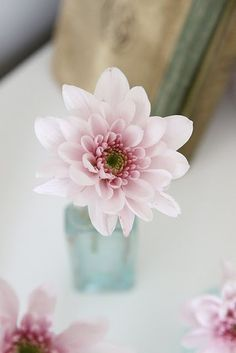 ~a simple flower that looks like this speaks to my heart.