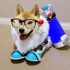 Mei Doge by @Outside_the_Vox