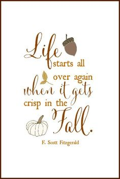 TOP LIFE quotes and sayings by famous authors like F. Scott Fitzgerald : Life starts all over again when it gets crisp in the fall. Scott Fitzgerald Quotes, Ideas Hogar, Happy Fall Y'all, Autumn Inspiration, I Fall, Autumn Girl, Hello Autumn, Fall Crafts, Fall Halloween