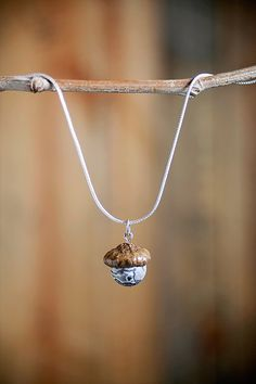 Real Acorn Necklace with Map Jasper + Sterling Silver by NuttierThanASquirrel | $32.50