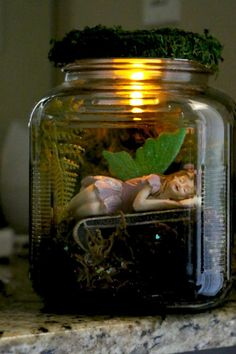 Best diy miniature fairy garden ideas (48)