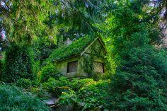Fairytale cottage | Canada Dit leuke huisje in Canada wordt bijna opgeslokt door al het groen. Wij kunnen ons voorstellen dat je hier al je zorgen van de buitenwereld vergeet.