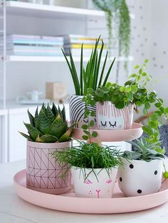 Apesar de o verão ter acabado e do outono estar bem no começo, decorar com plantas é uma excelente ideias, pois elas têm o poder de renov...