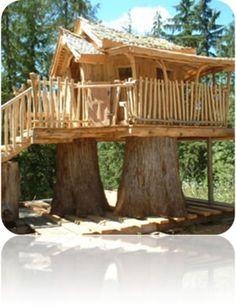 """Lincoln Lodge  The """"Lincoln Lodge"""" is a whimsical cottage/cabin style tree house that spans a total of 3 huge logs.    It's all cedar construction and built stout as can be! It has swings, interior fold up tables and more."""