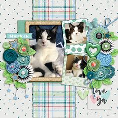sherlock - Digi Note To Self Cat Sketch, Scrapbook Templates, Dee Dee, Note To Self, Sherlock, Digital Scrapbooking, Gypsy, Kids Rugs, Projects