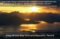 Don't let the EPA remove protections for some of our nation's most important salmon habitat in Bristol Bay, Alaska. A massive open pit mine threatens not just first-class sockeye salmon runs but jobs and wildlife thriving in the region.
