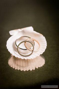 classic wedding rings; photo: Brian Dorsey Studios