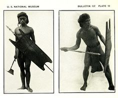 Bontoc Igorots with headhunting axe, spears and shields. c 1900