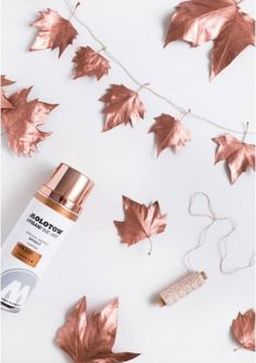 Awesome DIY Copper Projects for Your Home Decor Copper Leaf Garland / Copper spray paint + leaves make for a gorgeous garland.Copper Leaf Garland / Copper spray paint + leaves make for a gorgeous garland. Fall Crafts, Diy And Crafts, Fall Room Decor, Copper Spray Paint, Gold Spray, Metallic Paint, Metallic Gold, Deco Nature, Ideias Diy