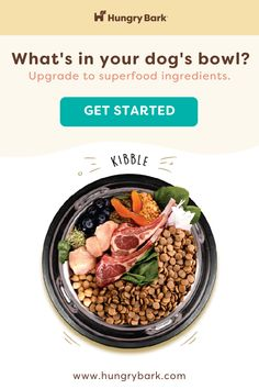 Personalized meal plans pairing superfood-packed kibble, with specially selected supplements and a tasty protein mix-in for added variety and nutritional boost.  pet products dog,house pet,origami dog,dog accessories,pet odor,dog love quote,diy dog,puppy dog,little cats,puppy ideas,cute pets,adorable pets,diy dog memories,diy pet ideas dog,christmas dog,dog and cat treats,dog ids,dog stuff pet care,dog area,cats pets,pretty dog,pets ideas,love of a dog,pet products,dog life,perfect dog,cat Make Money Blogging, How To Make Money, Dog Food Supplement, Protein Mix, Premium Dog Food, Dog Area, Cat Treats, Diy Dog, Christmas Dog