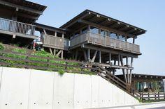 Gallery of Asahi Kindergarten Phase I & Phase II / Tezuka Architect - 3