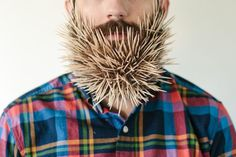 Hilarious Photos of a Man with Random Objects in His Beard #hilarious #photo #man #objects #beard