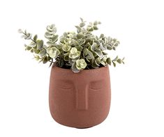 Potted Plants, Decoration, Planter Pots, Baby Shoes, Clay, Brown, Face, Inspiration, Stop Motion