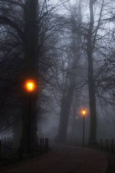 luz-sonriente:  A rare autumn fog captured at the footpath leading to King's College, Cambridge