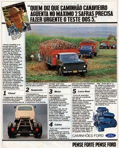 1980 Ford F-Trucks - Brasil