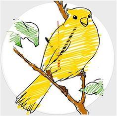Sarı Kanarya - Sarı Kanarya - Kendin Tasarla - Duvar Saati 27cm