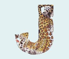 Creative vector Inspiration: Animals in Alphabetical Letters