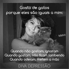Gosto de gatos porque...