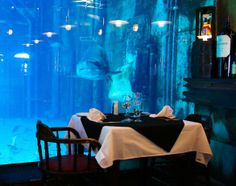 Dining with the sharks: Cargo Hold restaurant in Durban, South Africa Come Dine With Me, Neo Victorian, Going On Holiday, Africa Travel, My Dream, Places To See, South Africa, African, Adventure