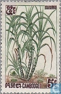 1962 Cambodia - Fruit Rare Stamps, Vintage Stamps, Timor Oriental, Flower Stamp, Angkor, Stamp Collecting, National Museum, Flora, World