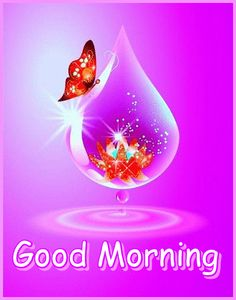 Good Morning Wishes Gif, Morning Qoutes, Good Morning Post, Good Night Gif, Night Love, Morning Greetings Quotes, Morning Messages, Beautiful Love Images, Merry Christmas Pictures