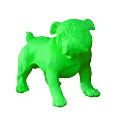 carlin vert fluo debout .:serendipity.fr:.