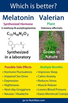 Read more regarding what Melatonin is and it's effects as well as Valerian root as a better alternative. Health And Nutrition, Health Tips, Health And Wellness, Health And Beauty, Homeopathic Remedies, Health Remedies, Natural Remedies, Valerian Root Side Effects, What Is Valerian Root