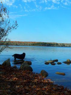 Burlingame State Park      #VisitRhodeIsland