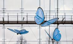 青い蝶を模ったアーミードローンは、美しく優雅に舞う詩のようなビジュアルとテクノロジーを兼ね備えたプロダクトだが、必殺の武器にもなり得る。