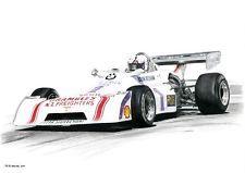 Brian Redman Chevron B29  original motor racing art