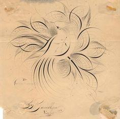 pointed pen flourishing   Anne Elser: Birds & Flourishing Calligraphy Workshop with Bill Kemp