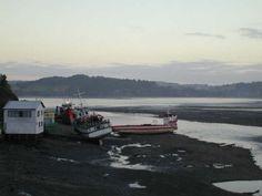 Chile, Boat, Vehicles, Dinghy, Chili Powder, Chilis, Boats, Vehicle