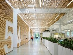 Bright eco office