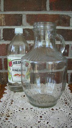 Speas Half Gallon Glass Pitcher Original by SweetCarolinaWhimsys.  $15.00