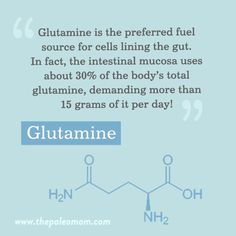 In our diet, the best sources of glutamine include broth, seafood (especially crustaceans like shrimp, crab, and lobster, but also saltwater fish), organ meats, poultry, pork, red meat, and protein-rich dairy. Certain plant foods like cabbage, asparagus, and broccoli are also rich in glutamine! Heat Shock Protein, Cell Line, Gut Microbiome, Womens Wellness, Urinary Tract Infection, Metabolic Syndrome, Ulcerative Colitis, Holistic Healing