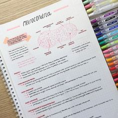 Thank you all so much for 2️⃣0️⃣k  I never thought I would have so many followers  ~ Mitochondria notes: the powerhouse of the cell . Hope you are all having a good weekend ⭐️✨ *** in these notes I've spelt mitochondria wrong. The spelling is 'mitochondria' not 'mitrocondria'*** #studyblog #studyblogger #studyblr #studentlife #motivation #studysession #studywithme #studybreak #stationary #stationarygram #stationaryaddict #stationaryobsessed #productivity #studymotivation #inspire #...