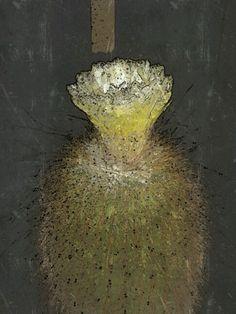 Cactus encendido