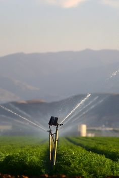 Water Cutbacks Now Mandatory In California For First Time In History