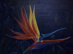 """Bird of paradise - flower in the jungle"" Oil painting by Andrzej Kapela"